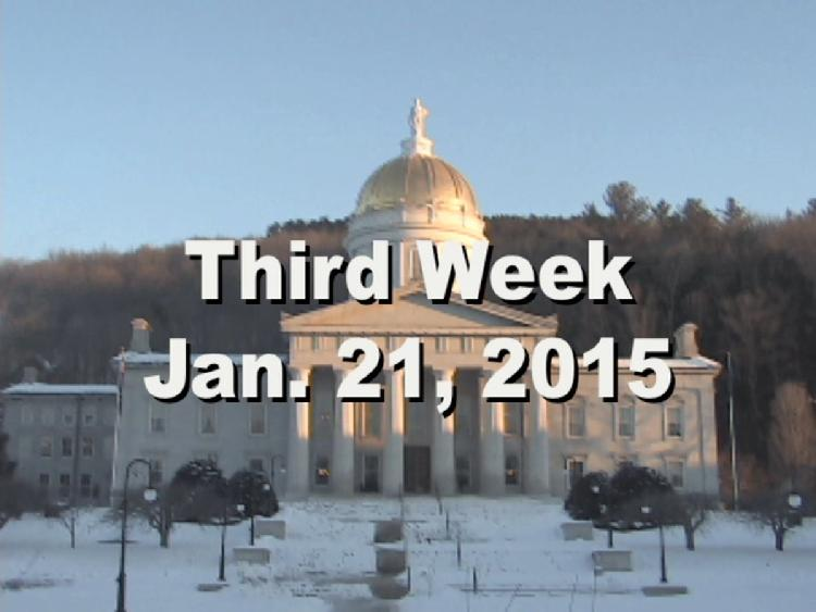 Under The Golden Dome 2015 Week 3  Third week of the 2015 Vermont legislative session Jan. 21, 2015. State House Info � The Paolina Bonaparte Borghese marble sculpture. Interview segments with Former Governor Jim Douglas, Sen. Ginny Lyons, Rep. Helen Head, Sen. Joe Benning, Rep. Paul Poirier, Rep. Ann Pugh, Rep. Betty Nuovo, Rep. Brian Savage, Sen. David Zuckerman. View at https://vimeopro.com/vtvt/underthegoldendome2015/video/117450347